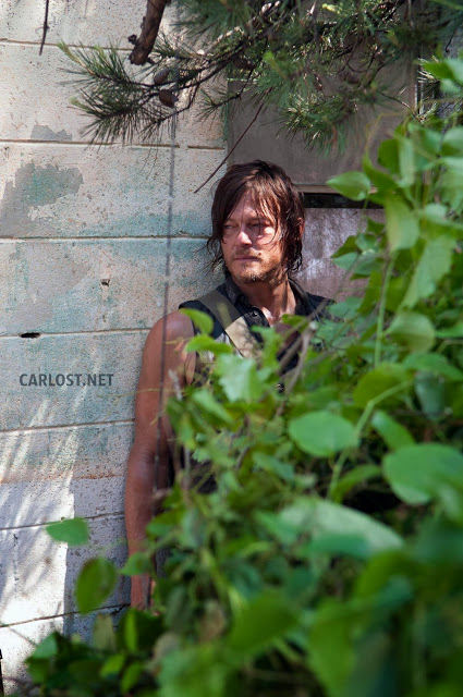 Daryl Dixon (Norman Reedus) en The Walking Dead 4.04 Indifference