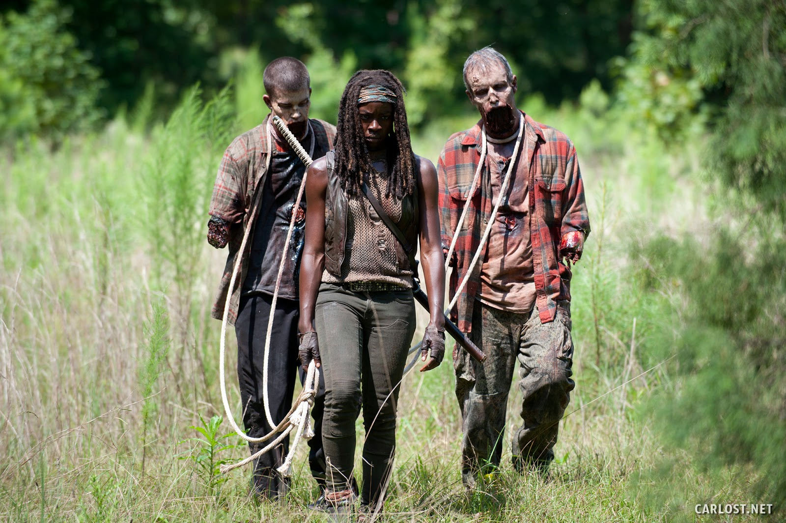 Michonne (Danai Gurira) y sus nuevas mascotas en The Walking Dead 4x09 After