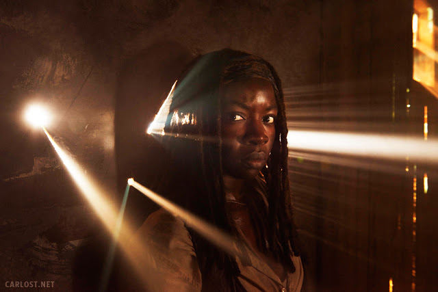 Michonne (Danai Gurira) - The Walking Dead 5