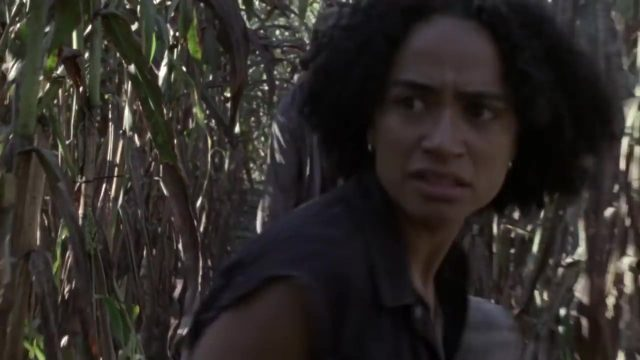 Spoiler The Walking Dead 9x11 - Connie rescatando al bebé