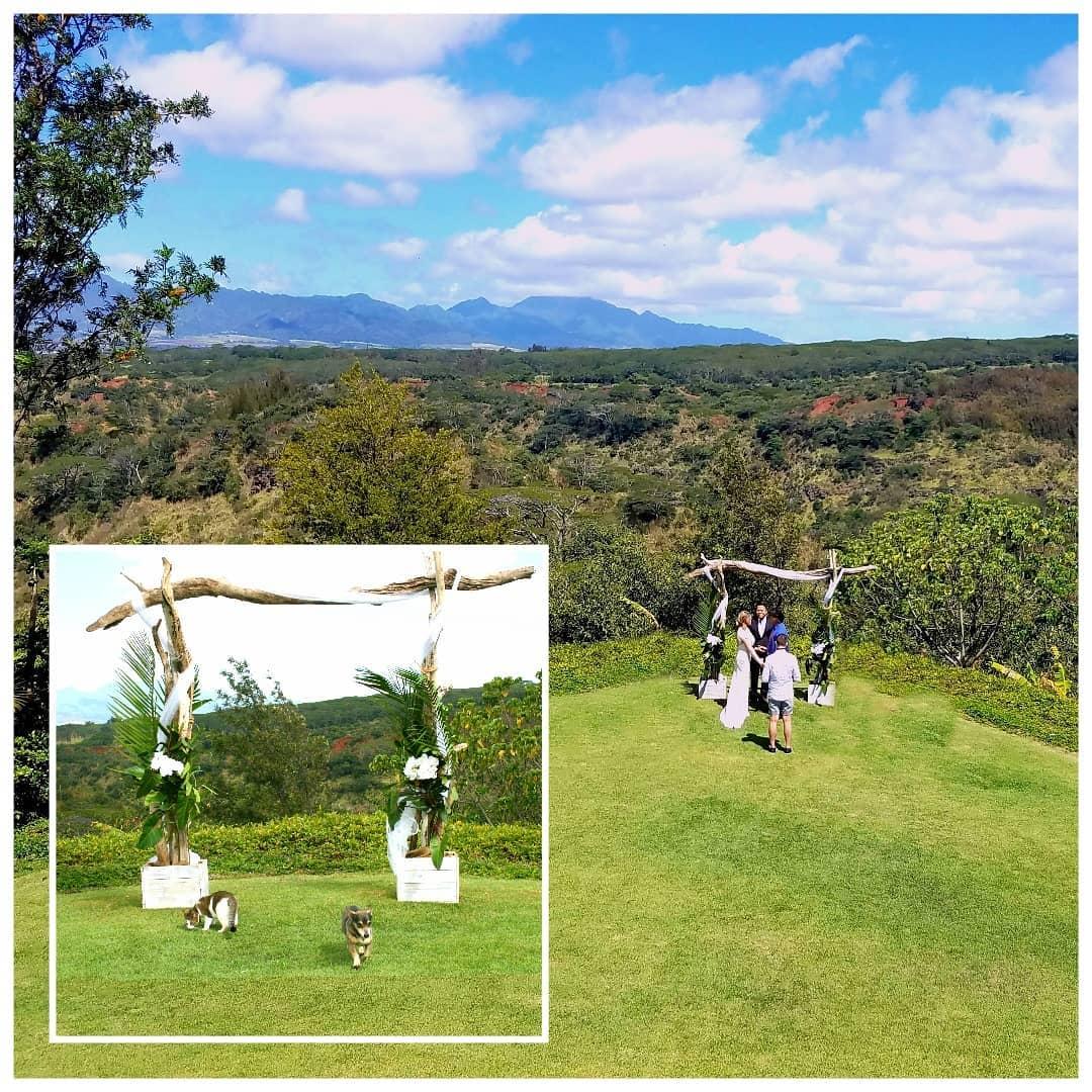 Ceremonia de boda de Eliza Taylor y Bob Morley en Hawaii